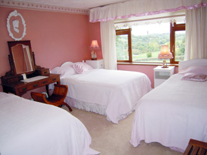 Bedroom - Bed and Breakfast, Belturbet, County Cavan, Ireland - Ford House